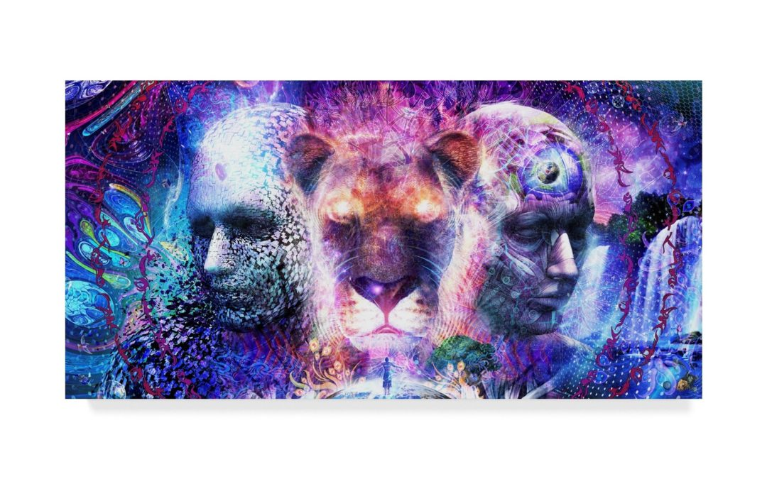 177 | Todd Medina: The Holy Matrix vs The Matrix and 5th Dimensional Living