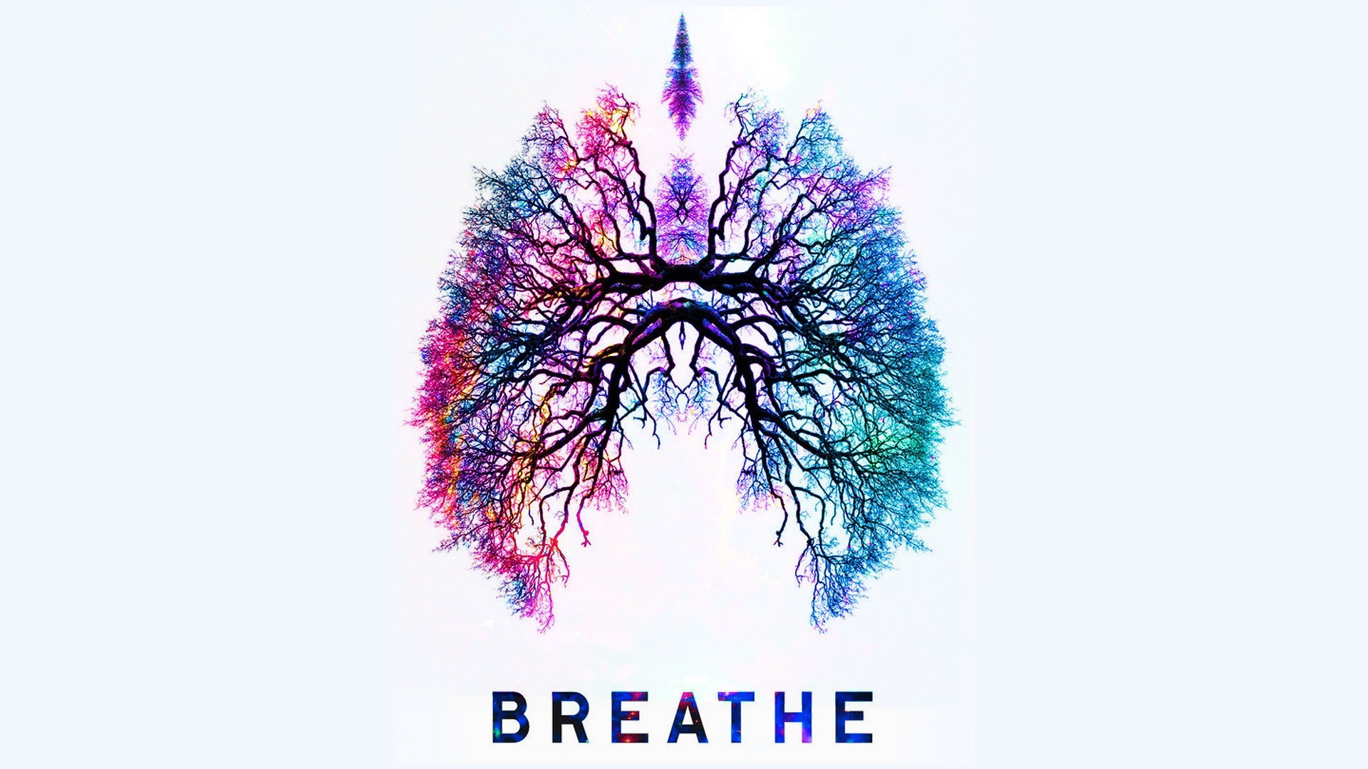 Holistic Health, Building Your Immune System and the Power of Breath with the Founder of Soma Breath